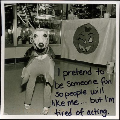Halloween Dog from PostSecret